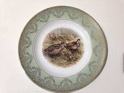 WH Grindley & Co Decorative Satin White Ironstone Plate (B32/11) • 5£