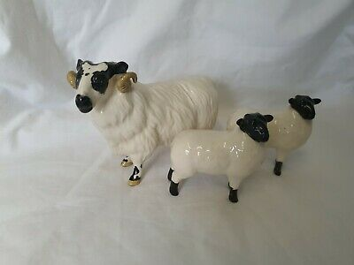 John Beswick Black Face Sheep Ram & Two Lambs Perfect Condition  • 17£