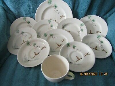 Royal Doulton The Coppice Bundle Dinner Plate Cup Saucers And Side Plates • 5£