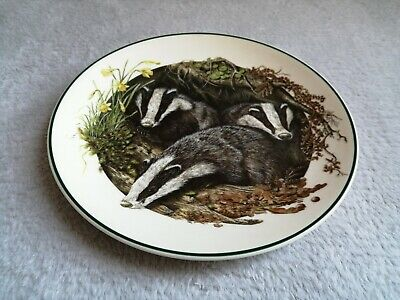 The Badger  Baby Animal Collection  Plate By Wedgwood - Made In England • 6£