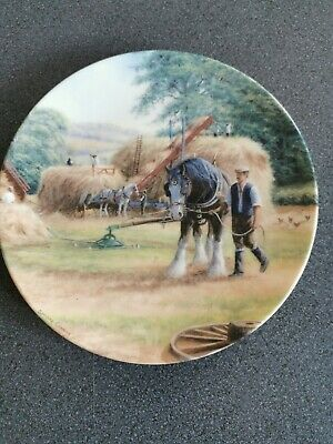 Royal Doulton Decorative Plate • 4.60£