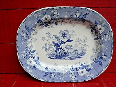 RARE MID 19th CENTURY ELKIN & NEWBON BLUE & WHITE MEAT PLATE, BOTANICAL BEAUTIES • 39.99£