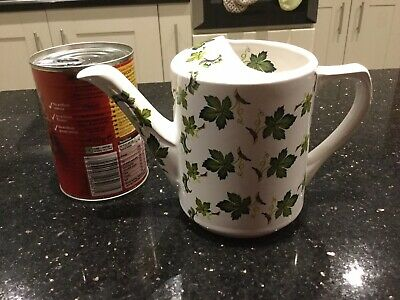 Decorative Ivy Patterned Pottery Watering Can • 2.30£