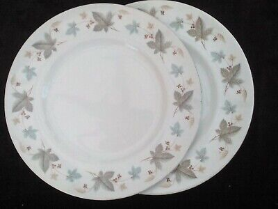 Dinner Plates X 2, Ridgway Pottery White Mist Pattern, 1960s Vintage • 10£