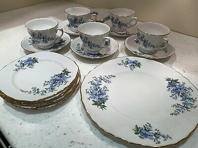 Queen Anne - Forget Me Not - 20 Pieces • 19.50£