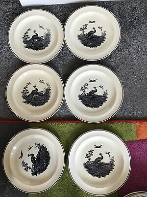 WEDGWOOD 'LIVERPOOL BIRDS' PATTERN  PLATE  6 X 240mm Wide VINTAGE USED • 12.75£