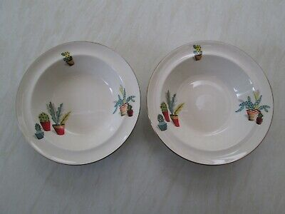 Alfred Meakin Soup Or Dessert Bowls In The Cactus Design X 2 • 16£