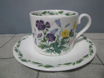 Vintage Queens China Royal Horticultural Society The Garden Tea Cup & Saucer • 2.99£