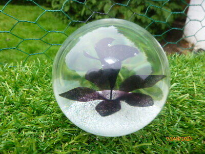 LOVELY : Caithness Limited Edition Paperweight. NIGHT FLOWER. Number 234 Of 1500 • 16£