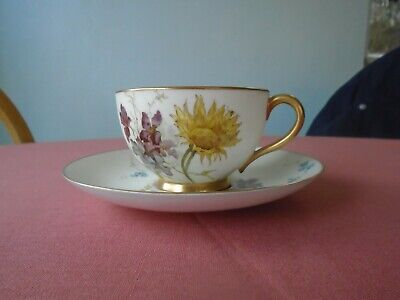 Royal Worcester Antique Cup And Saucer, 1892, Floral With Gold Trim • 10£