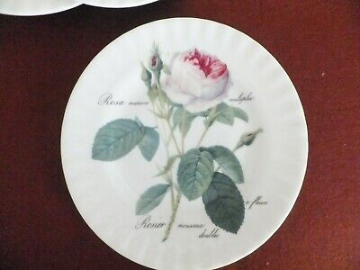 Roy Kirkham Redoute Rose Salad Plate 20cm • 6.50£