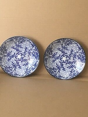 Two Blue Oriental Bamboo Ceramic Plates/Dishes. • 6£