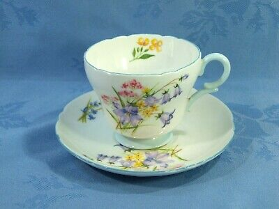 EXQUISITE SHELLEY CUP AND SAUCER IN THE WILD FLOWERS DESIGN ~ PATTERN No.13668 • 11.99£