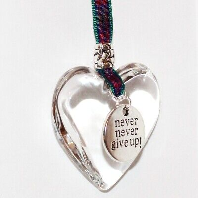 Glass Heart Keepsake With 'never Never Give Up' Charm Friendship Gift • 6.95£