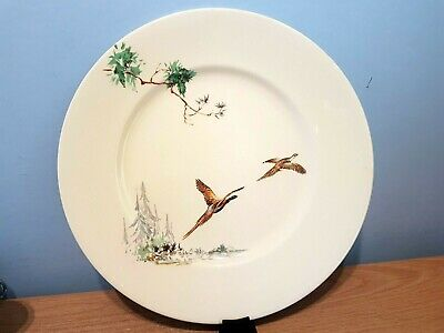 Royal Doulton The Coppice 10.5  Dinner Plate. D5803. • 5£