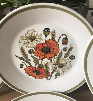 PoPPy Porcelain 6 Plate By J&G Meakin • 25£