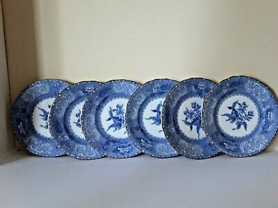 Antique Spode Copeland Camilla Blue And White 6 Tea Plates • 72£