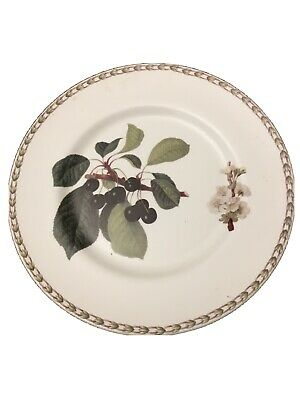 Queens Royal Horticultural Society Hookers Fruit Black Cherry Dinner Plate  • 10£