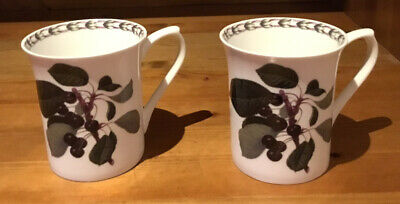 Queens Fine Bone China Mugs - The Royal Horticultural Society - Hookers Fruit • 6£