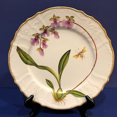 Anna Weatherley Orchids Dinner Plate  • 310.15£