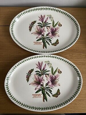 Portmerion Rhododendrum  2 Serving Plates • 15£