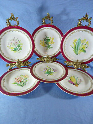 Unmarked Hand Painted Floral Pattern Dessert Plates Quantity 6 • 45£