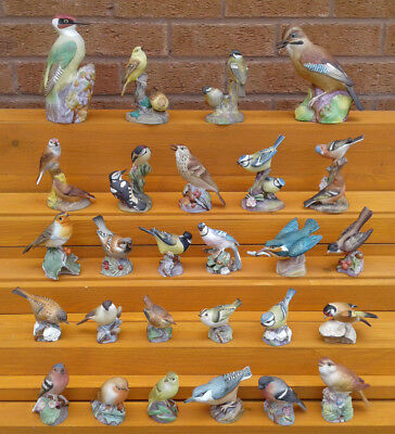 Royal Worcester - Selection Of Fine Bone China Bird Figurines. • 24.99£