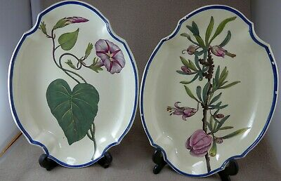 Pair Of Early 19thC Botanical Dishes Prev Attributed To Davenport • 125£