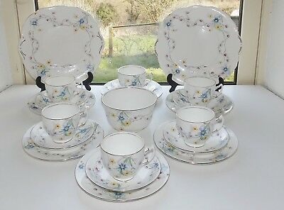 Salisbury Fine China Rosarie Pattern Hand Painted 21 PC Cups Saucers Plates Bowl • 39£