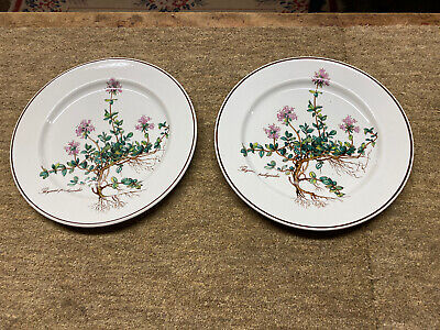 Villeroy And Boch Botanica Two 8 Inch Plates • 18£