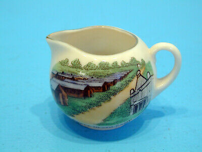 Arcadian Crested China Jug - Colour Picture View Of Prees Heath Camp • 14.99£