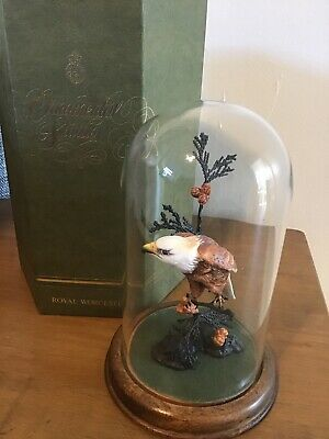Royal Worcester Fine China American Bald Eagle Bird Glass Dome Bronze Albany • 89.99£