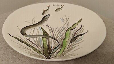 Johnson Brothers Fish Series Oval Plate ( Patten No 6 ) • 7.95£