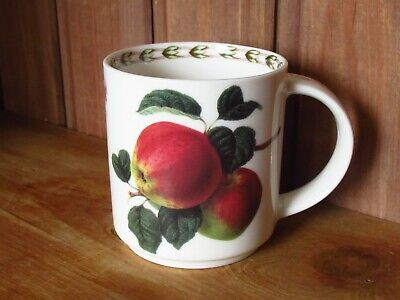 Queens Royal Horticultural Society Hookers Fruit China Mug • 10£