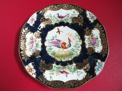 Early 19th Century Antique Hand Painted Floral/Bird  Study Cabinet Plate  Fine • 2.20£