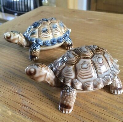 Shelldon & Shelly Are Looking For A New Loving Home! Wade Porcelain Tortoises🐢 • 1.99£