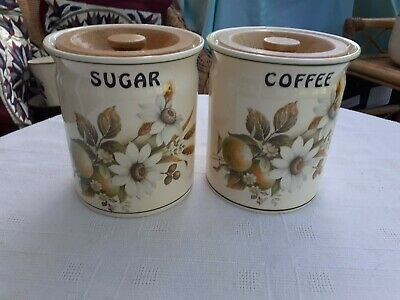 2 Vintage Brixham Pottery Floral Kitchen Cannisters - Coffee & Sugar • 7£