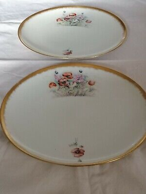 Pair Of Haviland Of France Hand Painted Plates • 15£