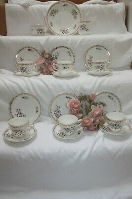 Royal Grafton 21 Piece China Tea Set  Floral Spring  Immaculate 21 • 40£