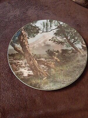 Vintage Royal Doulton  Mount Egmont  Decorative Plate D6436 • 4.99£