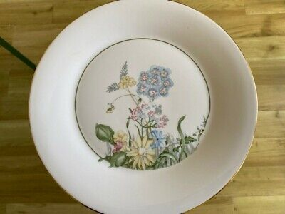 Royal Vale Bone China Ornamental Plate • 6£