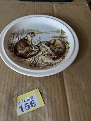 Runtons Pottery Pickering Otter Plate 7 Inches Y156 • 0.99£