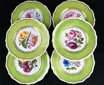 C1820 Set Of 6 Antique Coalport Botanical Plates With Apple Green Border • 249.99£