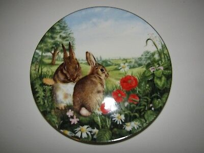 Royal Doulton 1990 Plate - The Country Wildlife Collection Rabbit Country Run • 9.99£
