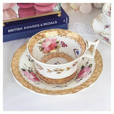 Antique New Hall Apricot Ground Floral Cup And Saucer Set, C.1820s Handpainted • 89£