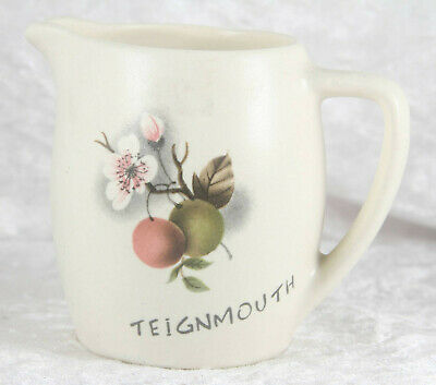 Unmarked Teignmouth With Floral Design 3 Inches Tall Miniature Jug   • 2.50£