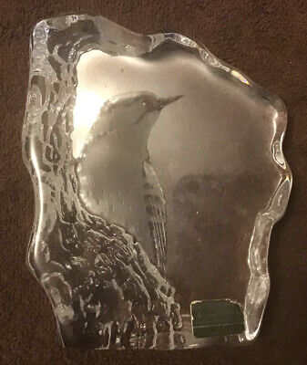 Signed Mats Jonasson Sweden Crystal Woodpecker Paperweight Signature Collection • 17.37£