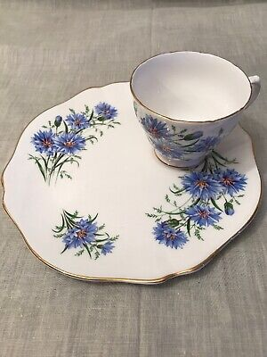 Royal Vale Cornflower Cup And 21cm Teaplate • 11£