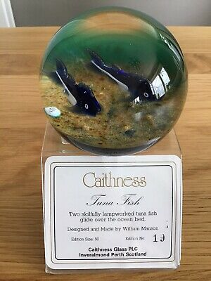 Rare Limited Edition Caithness Paperweight Tuna Fish By William Manson • 75£