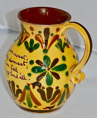 19th Century Aller Vale 'Kerswell Daisy' Pattern Jug • 79£